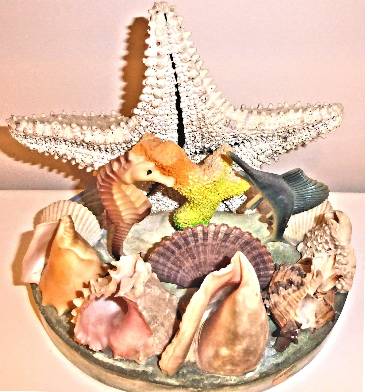 authentic-sea-shells-685141_1280.jpg