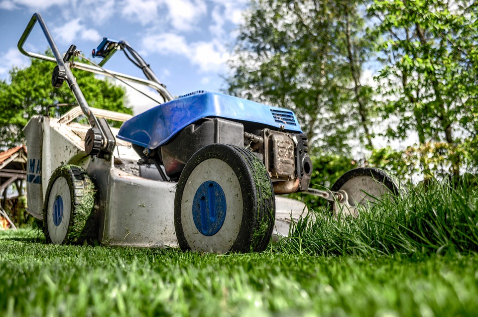 lawnmower-384589_960_720.jpg