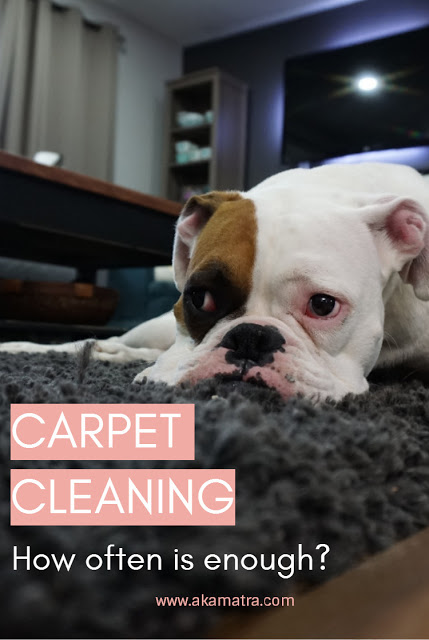 How Frequently Should You Have Your Carpet Cleaned?