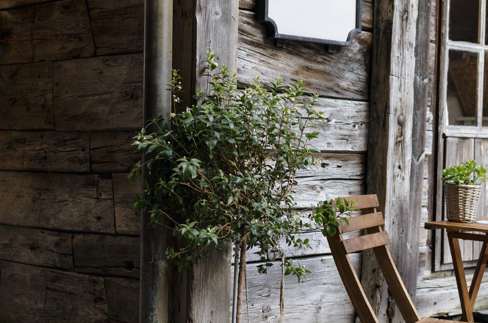 Rustic Realities: When You Want To Bring Outside Indoors
