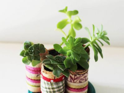 How to make miniature cork planters for your succulents