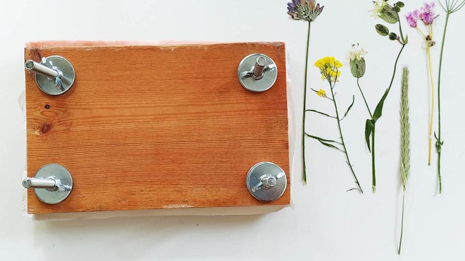 Diy Montessori Flower Press Akamatra